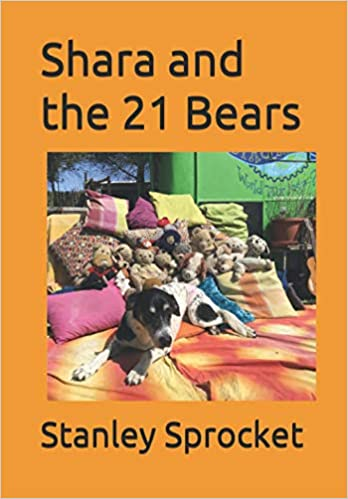 Shara and the 21 bears book cover